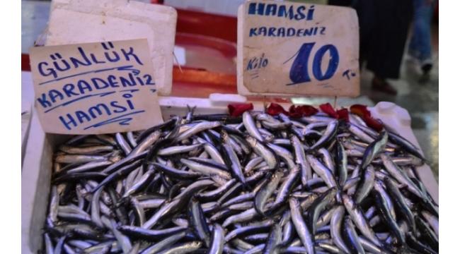 Balık Fiyatlarının Düşmesi Severlerin Keyfini Yerine Getirdi